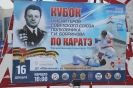 100 лет со дня рождения Г.И. Бояринова_21